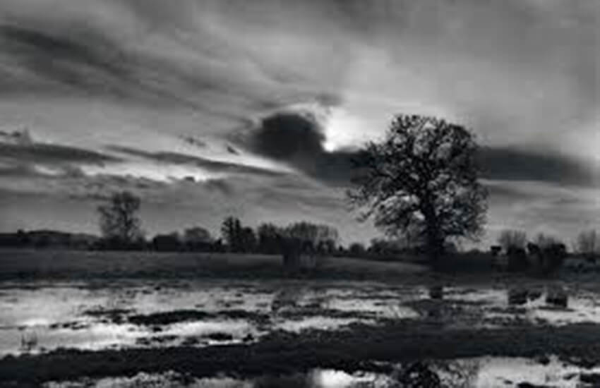 The Landscapes of Don McCullin (Week 11)