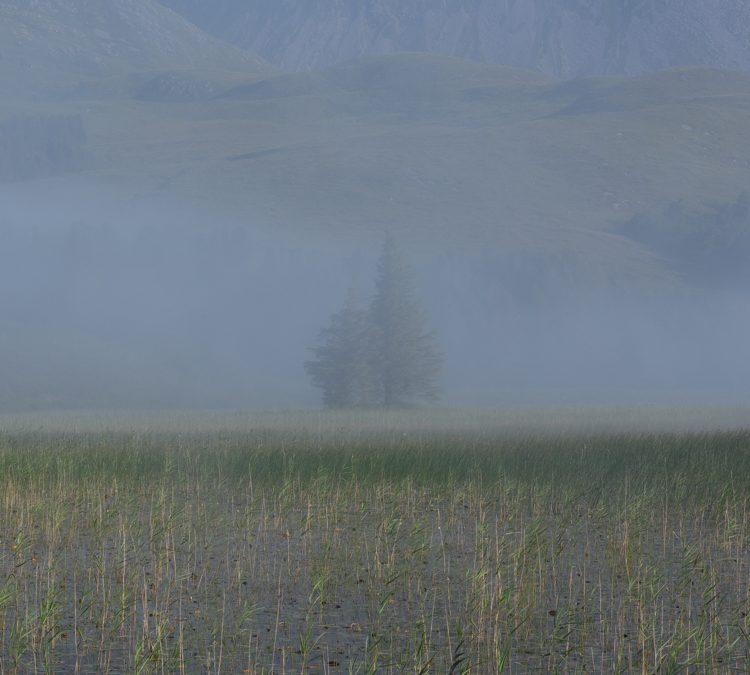 On a Still Morning by Nan Shepherd