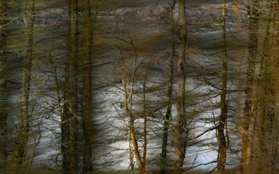 Reflecting on Reflecting on Images